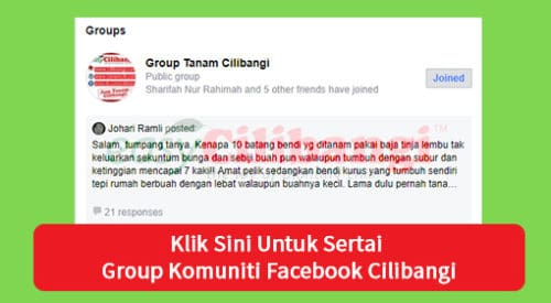 Group Tanam Cilibangi FB