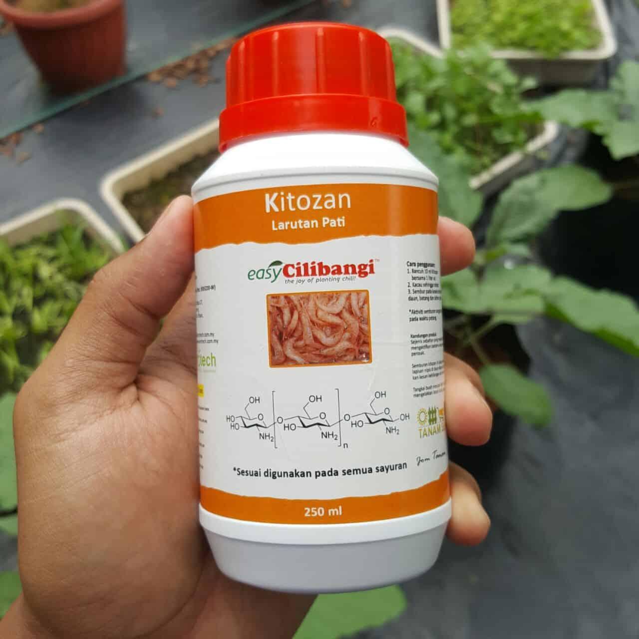 Chitosan atau kitozan ini mampu meransang pertumbuhan anak pokok yang sihat. Disamping mencegah serangan patogen yang berbahaya.